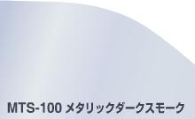 MTS-100 メタリックダークスモーク